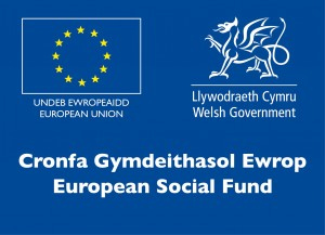 The Engineering Education Scheme Wales (EESW) | STEM Cymru